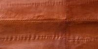Recherche de défauts sur cuir