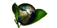 Effusivité thermique de matériaux biosourcés